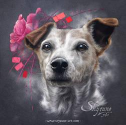 Dog portrait in pastel VANILLE by Skyzune ART