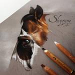 horse portrait: DEE TIME by Skyzune ART