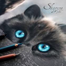 Cat portrait in pastel by Skyzune ART