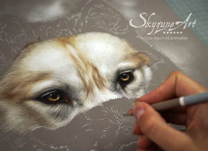 Dog in pastel - LOLY
