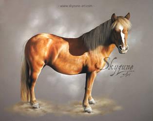 Horse drawing - VODKA by SKYZUNE ART