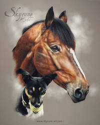 Dog and horse drawing - UTOPY and VICONTE