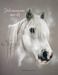 Horse drawing - JOLI MANANAN