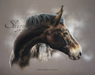 Horse drawing - BEA