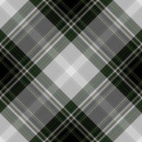 Seamless Plaid 0045 by AvanteGardeArt