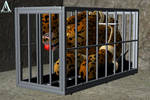 Caged like an Animal