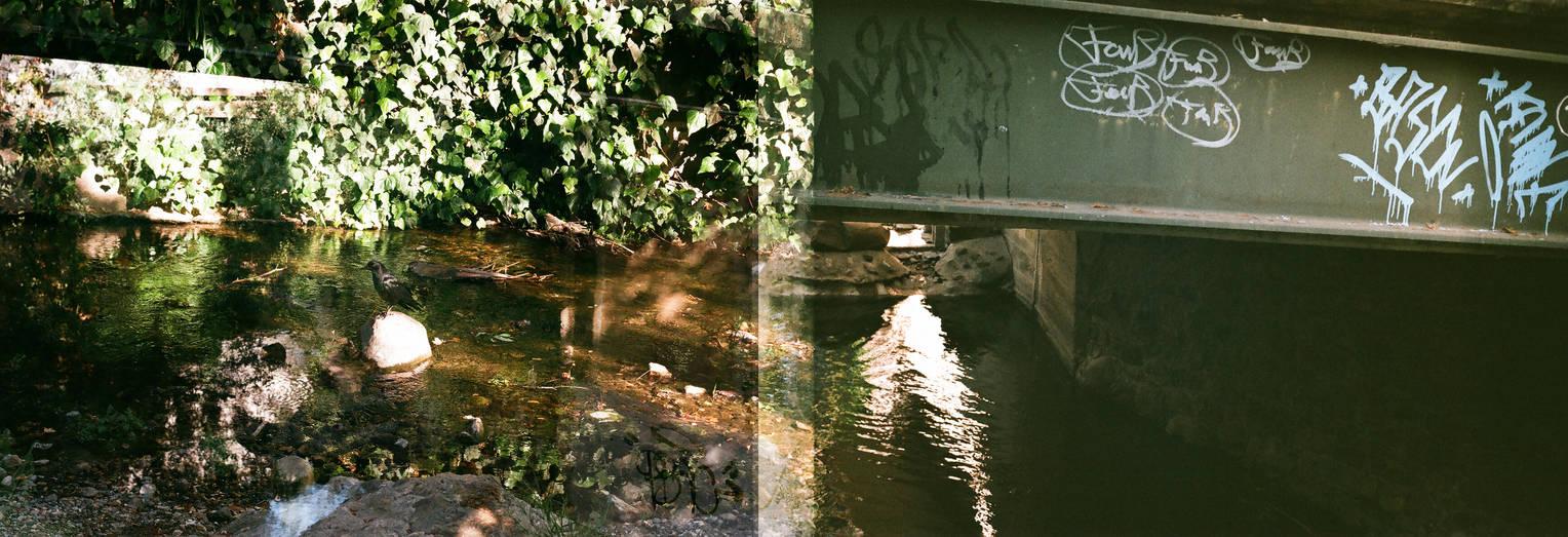 Creekside camera malfunction