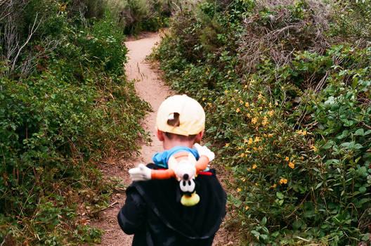 A Goofy hike