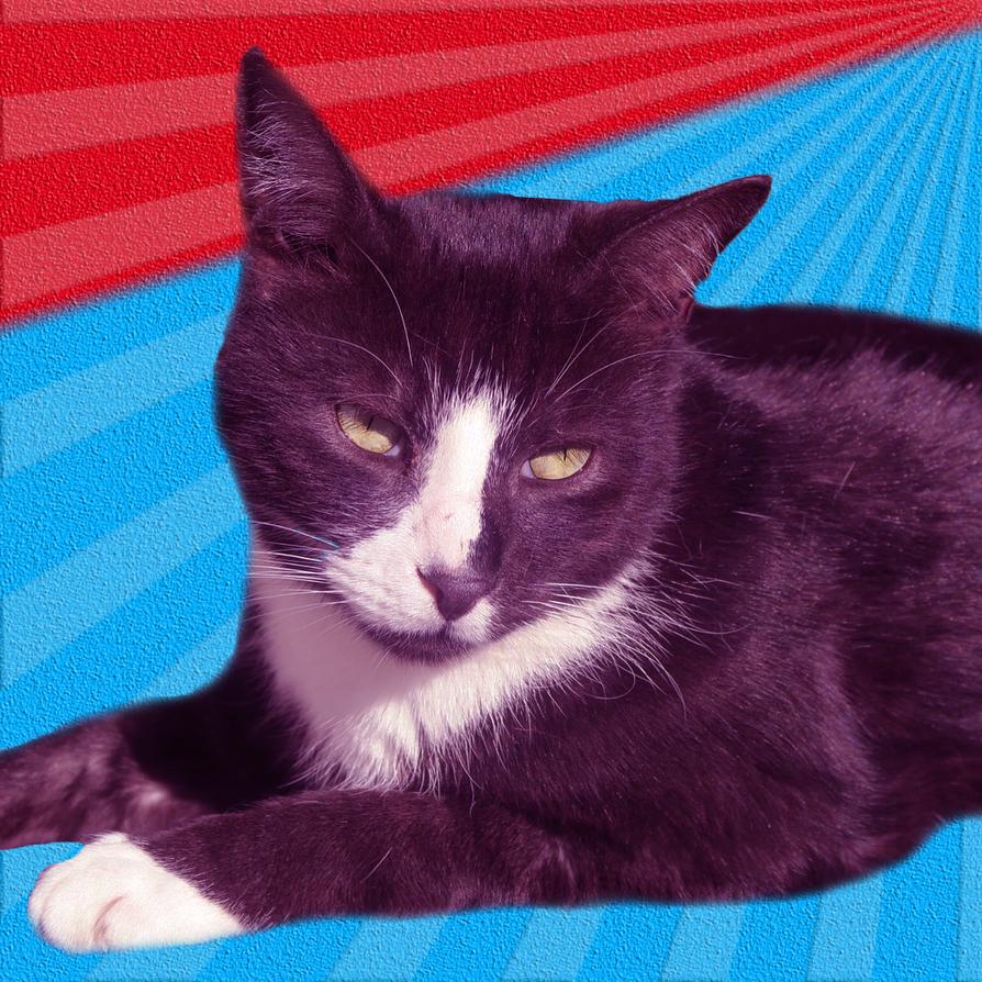 Black and White Cat Retro Art - 1024x1024 by liambanfield3