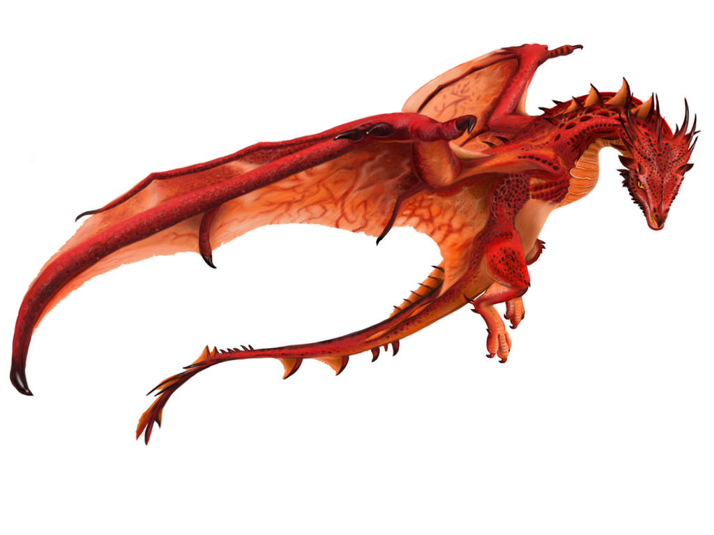 Wyvern Dragon: Introduction And Tracking Thread