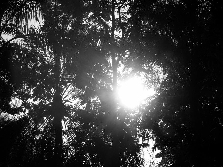 Rays of Hope by ReneeStone