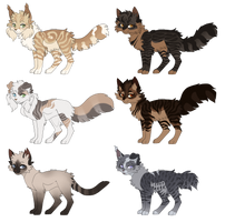 Feline adopt batch | Open | TWO LEFT