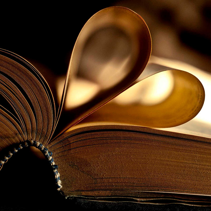 Love for books by BourbonInYourEyes