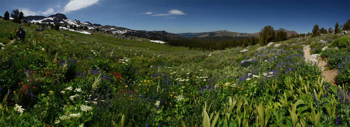 Carson Pass 2011-08-14 11 by eRality