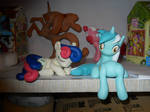 Bonbon with Lyra