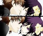 Lelouch and Suzaku 2