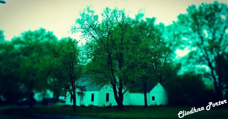 Green House  by Irishclicksphotos