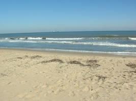 beach scenery plus one