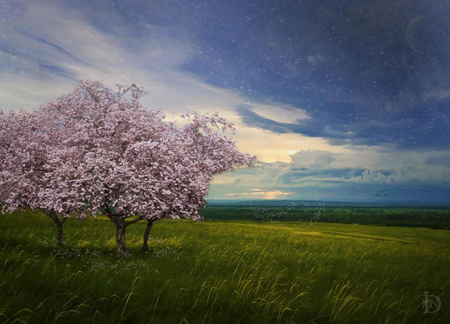 Serenity by DJMadameNoir