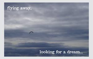 Fly away by enochmm