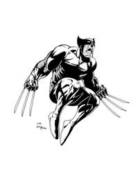 Wolverine in the air by billmeiggs