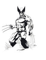 Wolverine by billmeiggs