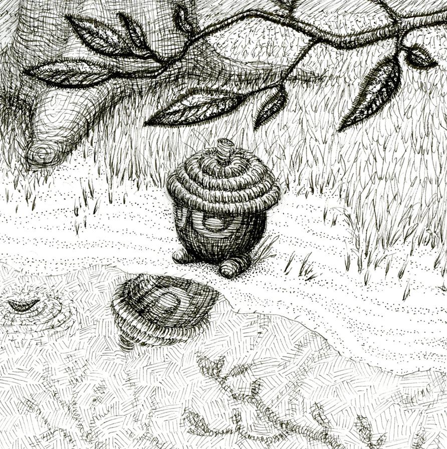 Seedot by KelpGull