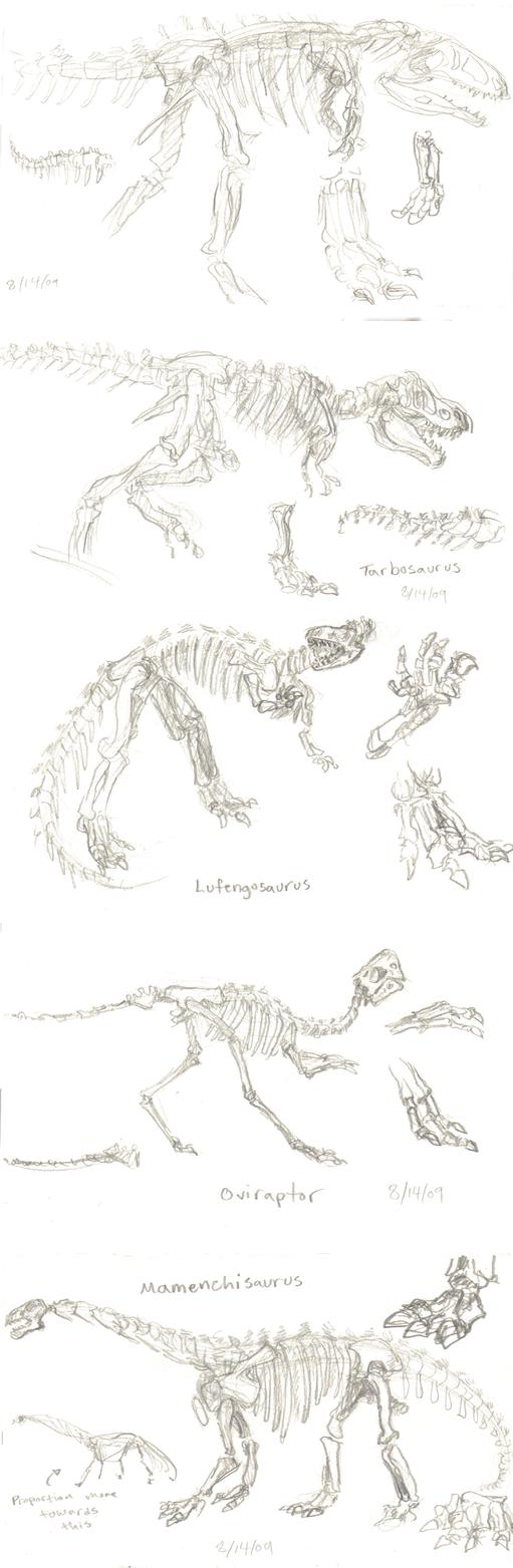 Dinosaur Studies by KelpGull