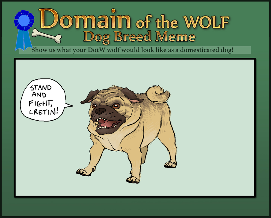 DotW Dog Meme - Ruzan by KelpGull