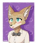 Fen fox