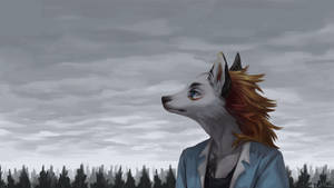 Cloudy calm