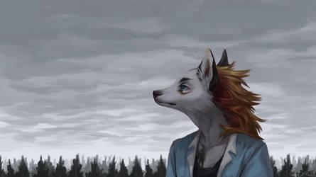 Cloudy calm by SleepyCatMeow