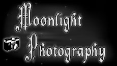Moonlight Photography logo by celticpath
