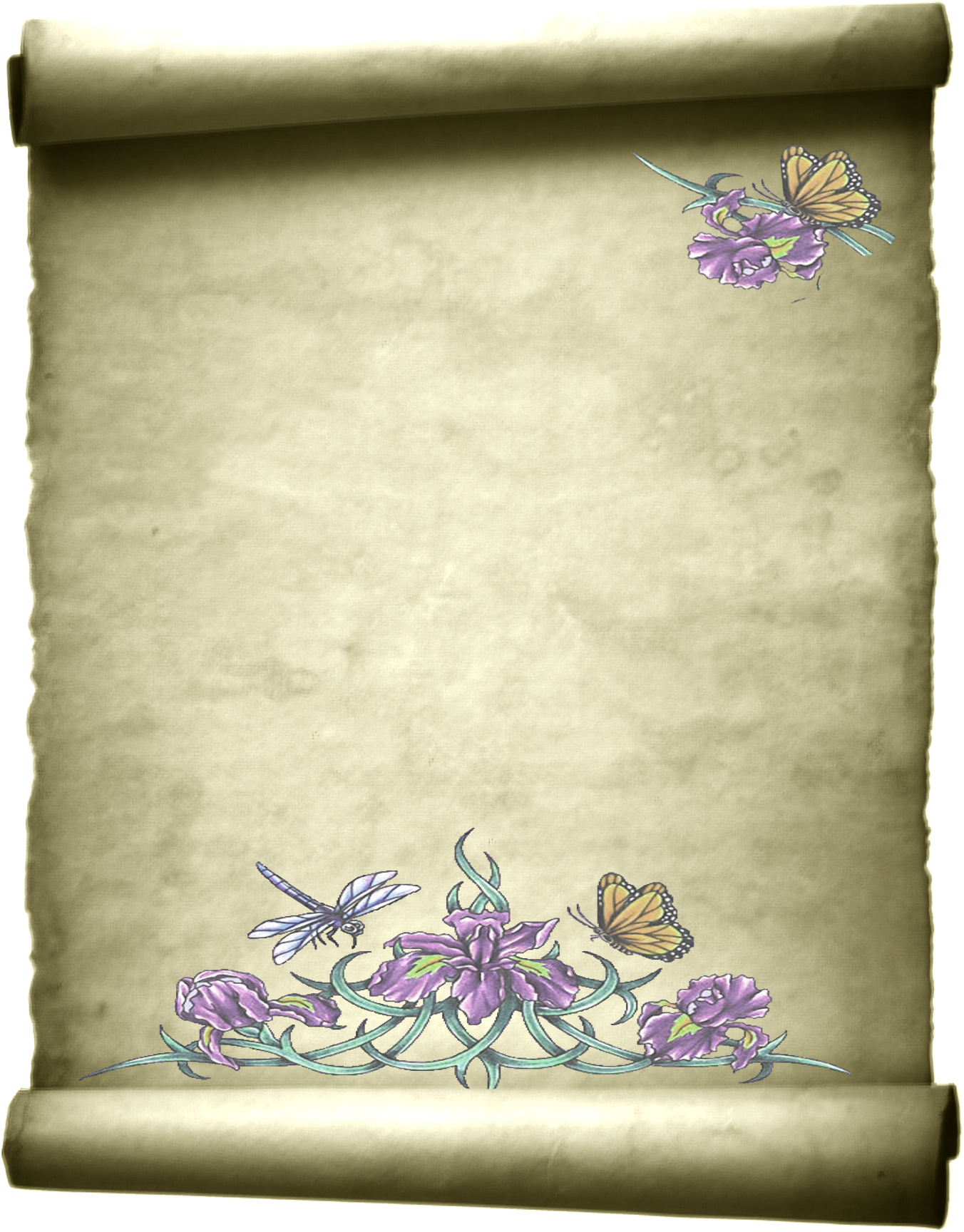Rolled Parchment By Angelmoon17 On Deviantart