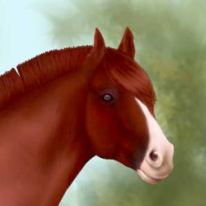 AveilaRose's Profile Picture
