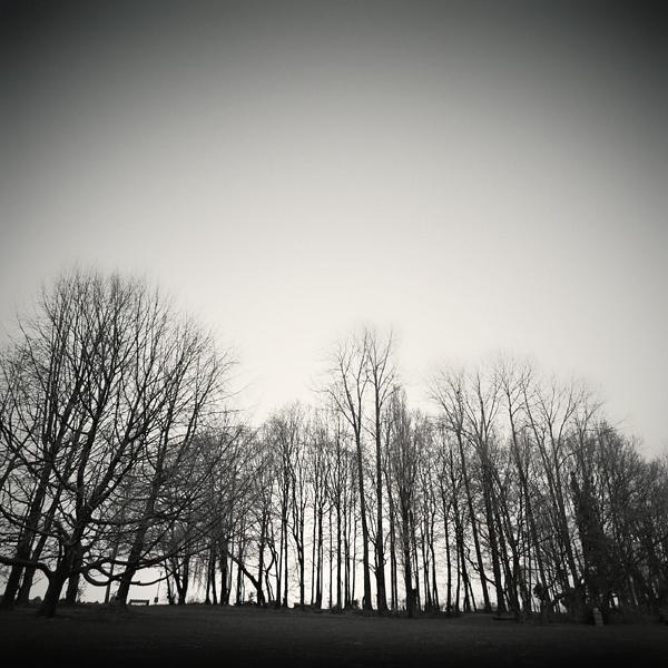 last winter by fantaijo