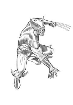 Classic Wolverine Sketch