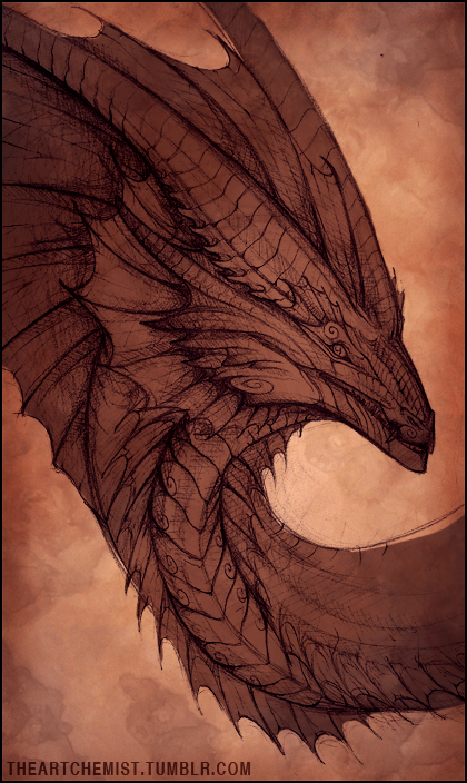 Dragon Sketch by Lynayru
