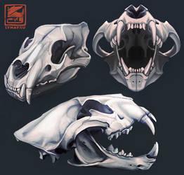 Skulls by Lynayru