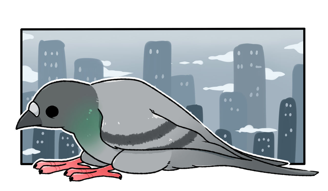 Pigeon by LexisSketches