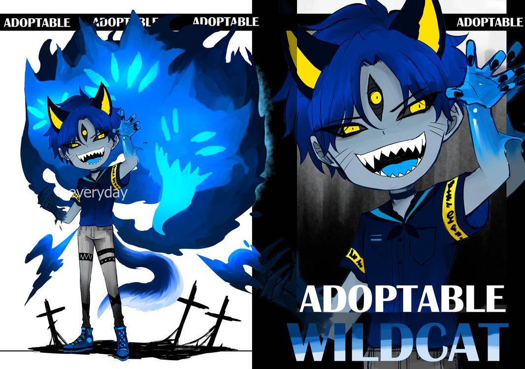 [OPEN]ADOPTABLE wildcat