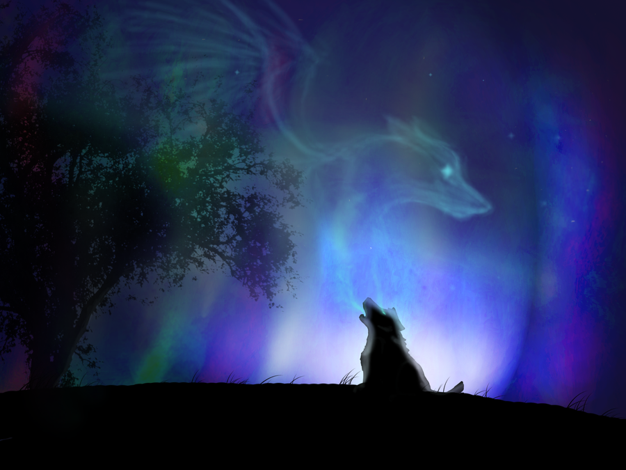 real northern lights wolf - photo #21