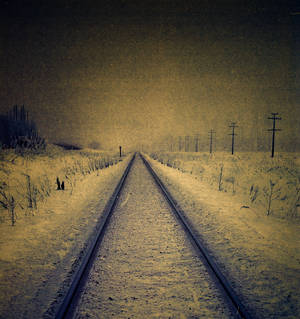 road  to the nothing
