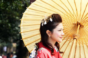 Japanese Beauty 1 by fayedilion
