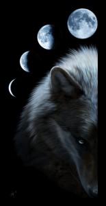 XxDarkStormDemonXx's Profile Picture