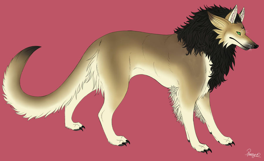 furry lion wolf or dog thing by pannyokami on deviantart. Black Bedroom Furniture Sets. Home Design Ideas