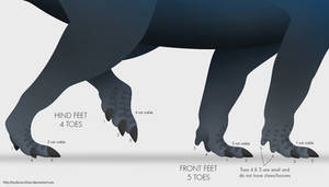 Ceratopsid Feet by Andorou-Khan
