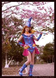 Dark Magician Girl: Pink Tree