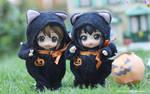 Yui and Azunyan Halloween Costume