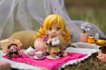 Tea Picnic with Mami Tomoe